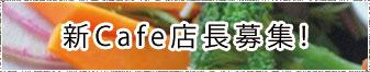 2016年冬からの新Cafe Kamejikan店長募集!