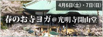 4月6日(土)・7日(日)春のお寺ヨガ@光明寺開山堂 参加者募集!