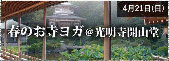 4月21日(日)春のお寺ヨガ@光明寺開山堂 参加者募集!