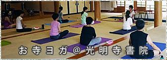 『春・桜満開の光明寺で お寺ヨガ』参加者募集