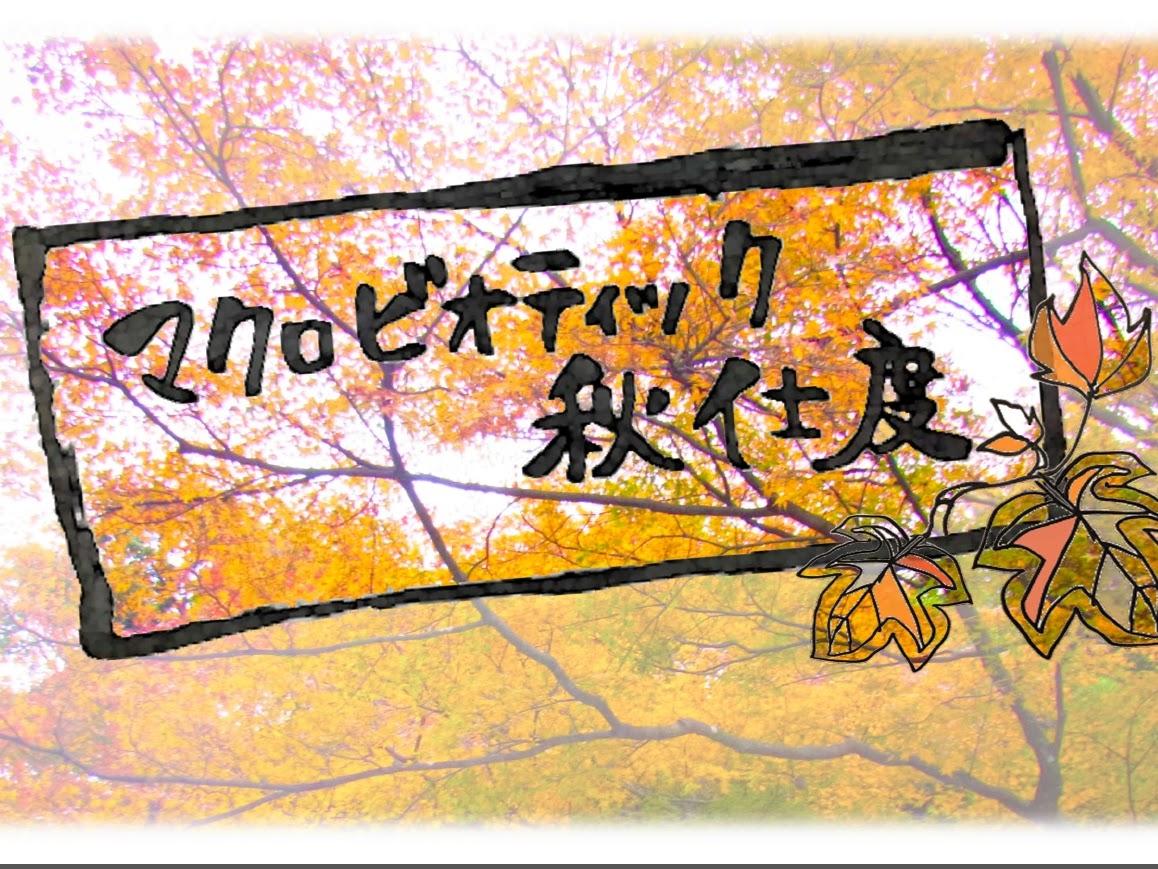 Akijitaku