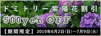 【期間限定クーポン】ドミトリー紫陽花割引 500円オフ